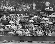 Lawn Tennis Framed Prints - Soggy Supporters Framed Print by Ron Stone