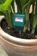 Tester Posters - Soil Ph Meter In A Plant Pot Poster by Trevor Clifford Photography