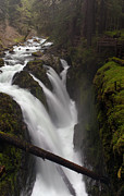 Olympic Framed Prints - Sol Duc Falls Framed Print by Mike Reid