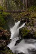 Olympic National Park Prints - Sol Duc Flow Print by Mike Reid