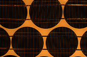 Solar Panel Prints - Solar Cells On Solar Panel Print by Damien Lovegrove