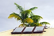 Hawai Posters - Solar Water Heater Poster by David Nunuk