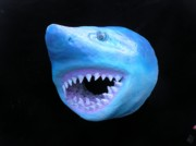 Shark Sculptures - sold Max the Shark by Dan Townsend
