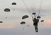 Armed Forces Prints - Soldiers Of The 82nd Airborne Descend Print by Everett