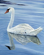 Perry Painting Originals - Solitary Swan by Danielle  Perry