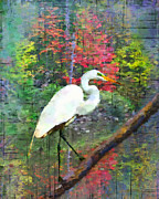 Great Birds Digital Art Posters - Solitude Poster by Betty LaRue