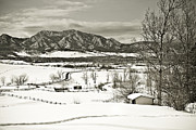 Snowy Field Framed Prints - Solitude in Boulder County Framed Print by Marilyn Hunt