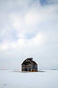 Winter Landscape Photos - Solitude in Pure by Christine Belt