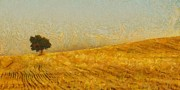 Wheat Prints - Solitude is Golden Print by Aaron Stokes