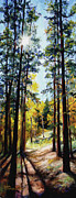 Panoramic Painting Framed Prints - Solitude Framed Print by Mary Giacomini