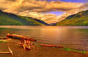Timber Originals - Solitude On Crescent Lake by John Absher