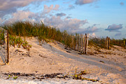 Sand Fences Photos - Solitude by Sharon Myers