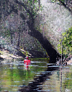 Canoe Painting Posters - Solo On The Suwannee Poster by Bill Brown