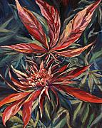 Weed Metal Prints - Somango Metal Print by Mary Jane