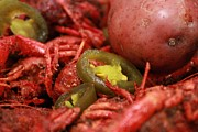 Boiled Crawfish Art - Some Like It Hot by Rdr Creative