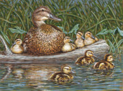 Ducks Paintings - Someone to Watch Over Me by Richard De Wolfe