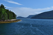 Somes Sound Prints - Somes Sound Print by Jeff Moose