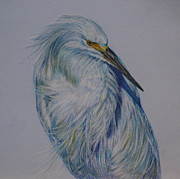 Egret Pastels Posters - Something Blue Poster by Linda Harrison-parsons