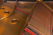 Grand Piano Prints - Something Grand Print by Steven Richardson