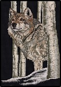 Wolf Photograph Mixed Media - Something in the Air by J McCombie