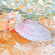 Sea Shell Digital Art Posters - Sometimes I Dream Poster by Betty LaRue