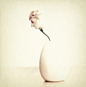 Still Life Photo Prints - Sometimes Print by Kristin Kreet