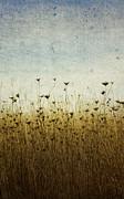 Somewhere Print by Rebecca Cozart