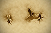 Playing Angels Digital Art Posters - Song of the Angels in Sepia Poster by Bill Cannon