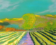Napa Valley Vineyard Pastels Posters - Sonoma Vineyard 4 Poster by Anthony George
