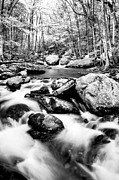 Beautiful Creek Prints - Soothing Print by Darren Fisher