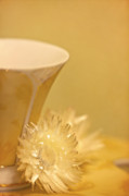 Cup Photos - Soothing by Evelina Kremsdorf