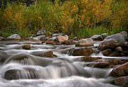 Rushing Photos - Soothing Waters of the Salt River by Dave Dilli