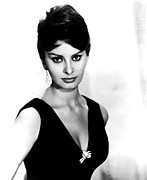 Loren Framed Prints - Sophia Loren, 1960 Framed Print by Everett