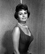 Colbw Photo Framed Prints - Sophia Loren Framed Print by Everett