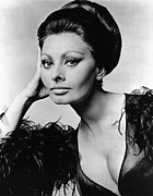 Updo Photo Posters - Sophia Loren, In Costume For Arabesque Poster by Everett