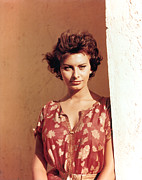 1950s Portraits Metal Prints - Sophia Loren, Legend Of The Lost, 1957 Metal Print by Everett