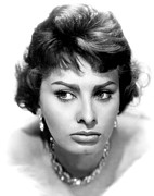 Loren Framed Prints - Sophia Loren, Portrait From 1959 Framed Print by Everett
