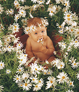 Pot Framed Prints - Sophie in Daisy Pot Framed Print by Anne Geddes