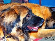 Leonberger Prints - Sophie Print by Richard Heath