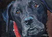 Black Lab Mixed Media - Soulful by Sheila Wedegis