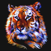 Wildcats Paintings - Soulful Tiger by Elinor Mavor