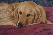 Dogs Pastels Framed Prints - Soulfull Eyes Framed Print by Billie Colson