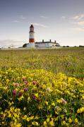 Low Angle Views Prints - Souter Lighthouse South Shields Marsden Print by John Short