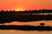 Mashpee Prints - South Cape Beach Marshes at Sunset Print by John Burk