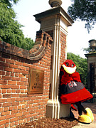 Mascot Metal Prints - South Carolina Cocky on Campus Metal Print by University of South Carolina Photography