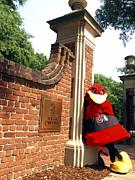 South Carolina Cocky On Campus Print by University of South Carolina Photography
