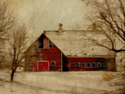 Trees. Field Prints - South Dakota Barn Print by Julie Hamilton