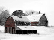 Snow Digital Art Posters - South Dakota Farm Poster by Julie Hamilton