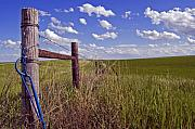 Fence Gate Posters - South Dakota Fence Poster by Kristen Massucci