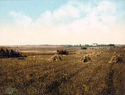 Photochrom Photos - South Dakota Harvest Field. Photochrom by Everett
